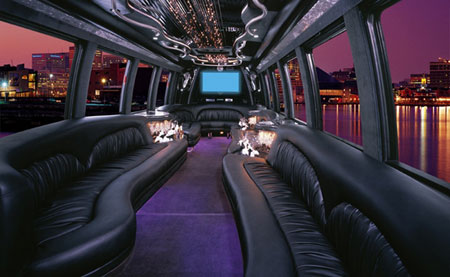 30 passenger mini party bus