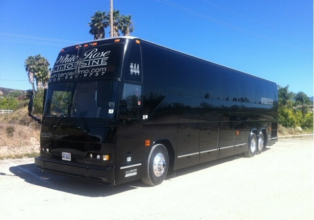 Luxury Party Bus Rental