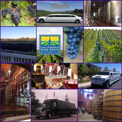 Wine Tours Near San Diego