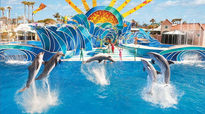 Party Bus Rental to Sea World in San Diego, Ca
