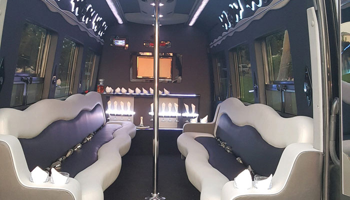 Mini Party Bus Rental in Newport Beach - Interior Photo