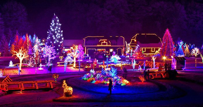 Orange County Holiday Lights Tour